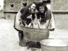 Wagner beim Waschen